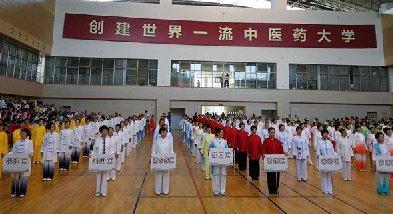 全国太极拳健康工程上海站公开赛吸引500太极拳手参赛